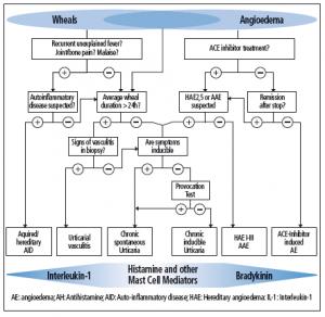 EAACI/GA2LEN/EDF/WAO diagnostic algorithm