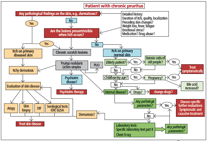 Based on figure 1 from Weisshaar E et al. European guideline on chronic pruritus. Acta Derm Venereol 2012;92:563-81