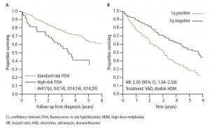 Figure 2. Patients with high-risk cytogenetics have a poor prognosis: (A) patients with del(17p), t(4;14), t(14;16)