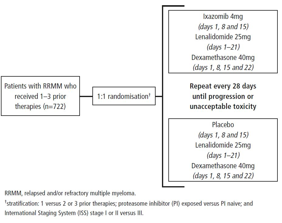 Figure 1. Study design and treatment randomisation